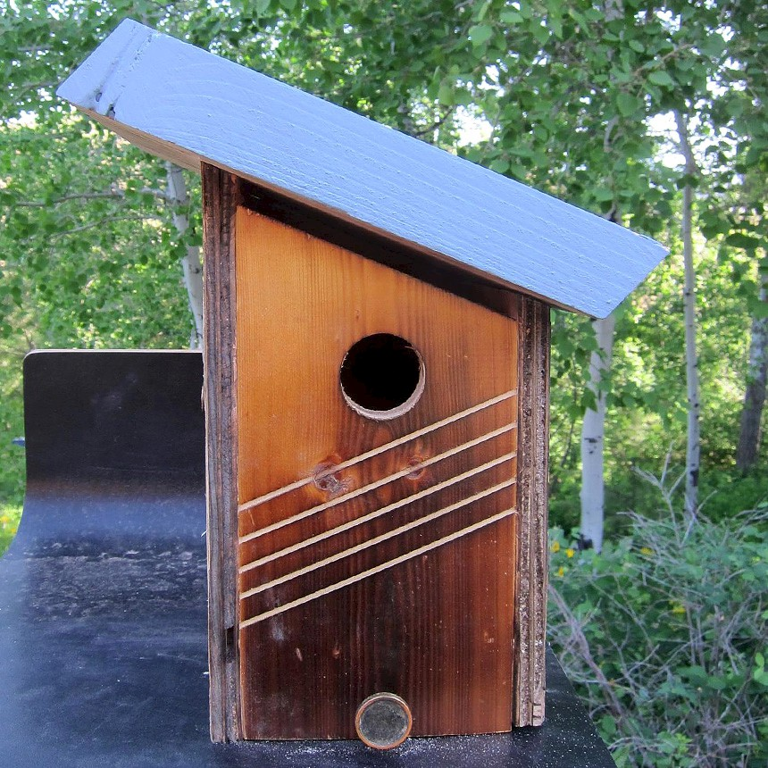 Bird Houses for Rent